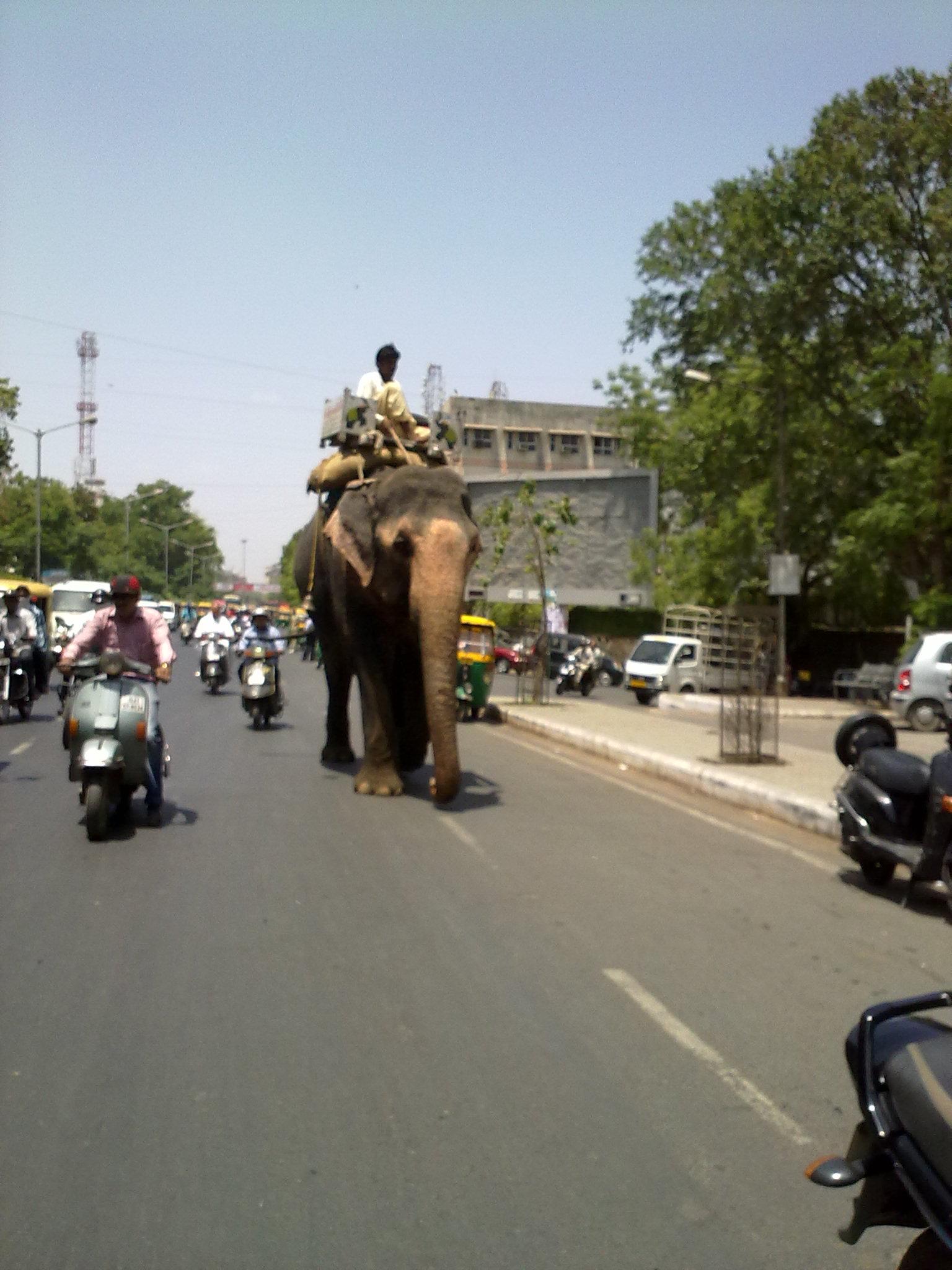 Ahmedabad Trip Part 2