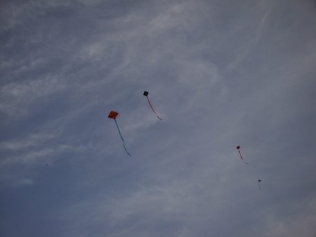 Kites dotting the sky