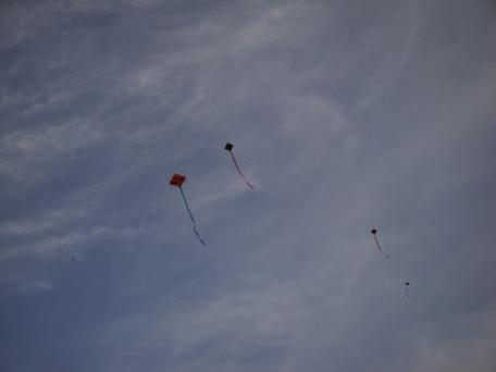 Kites dotting the sky